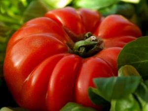 tomaten mehr als nur sugo forum naturheilkunde. Black Bedroom Furniture Sets. Home Design Ideas